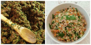 DIY dog food recipe your puppy will love