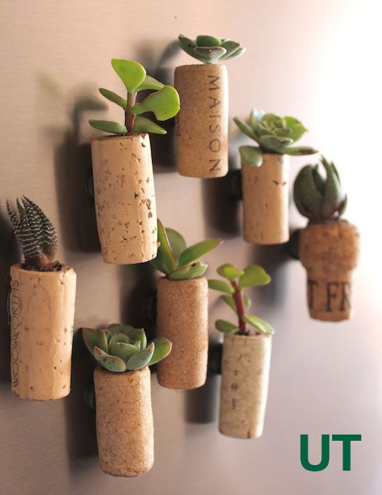 You only need one material to make this awesome planter for succulents!