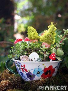 Indoor Teacup Fairy Garden