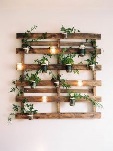 Farmhouse Rustic Indoor Hanging Garden With Luminaries