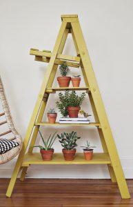 Chic Ladder Indoor Garden