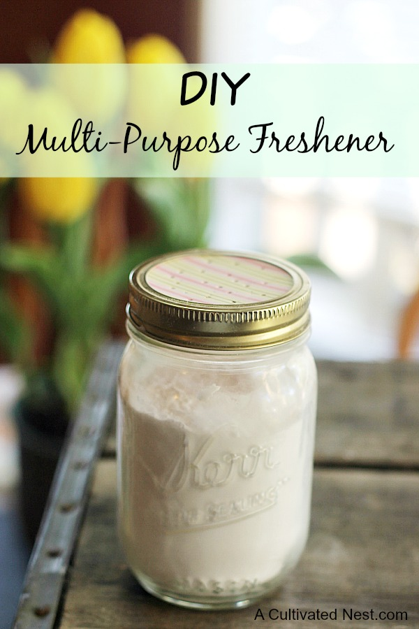 Multi-Purpose Baking Soda Freshener