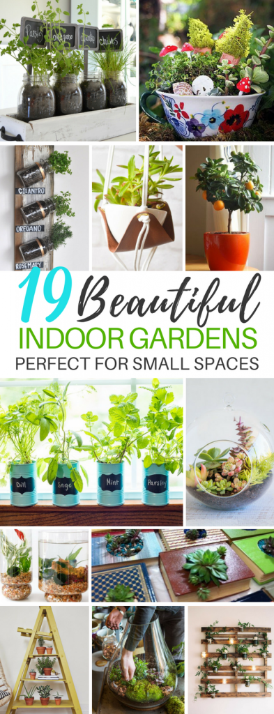 19 Beautiful Indoor Garden Ideas For Small Homes and Spaces