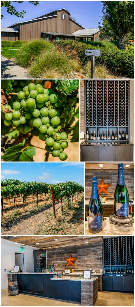 Starmont Winery Napa Valley Green Dream Bus Tours
