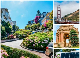 San Francisco Wine and Sightseeing Guide