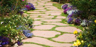 Flower Bed Pathway