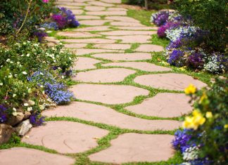 Flower Bed Pathway