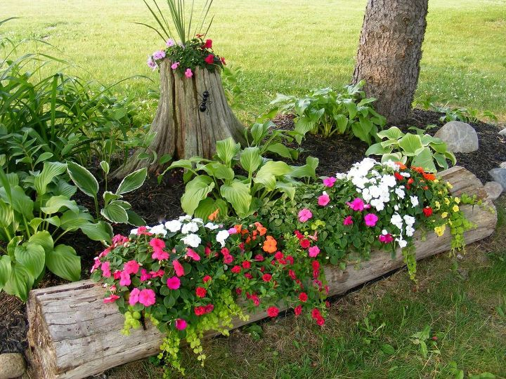 Tree Stump and Log Planter