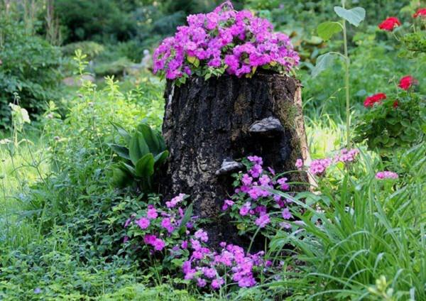 Tree Stump Flower Garden DIY