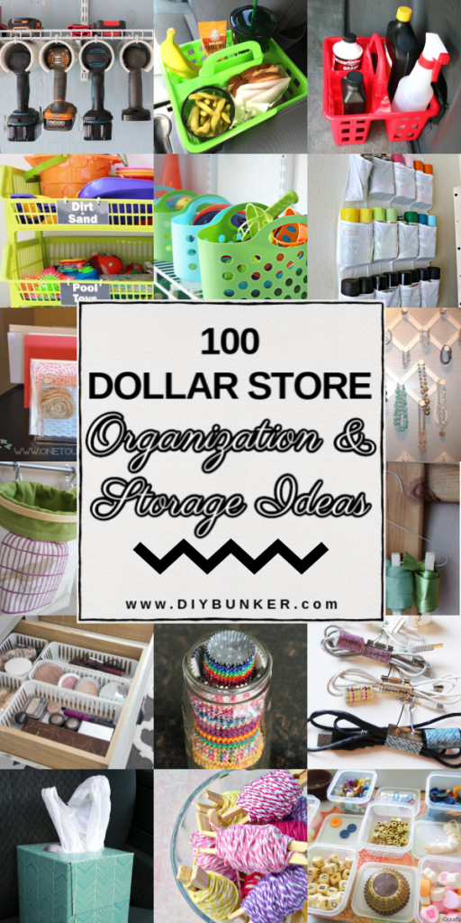 100 Dollar Store Organization and Storage Ideas