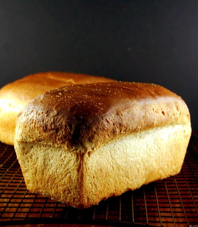 Sourdough Sandwich Bread No Yeast