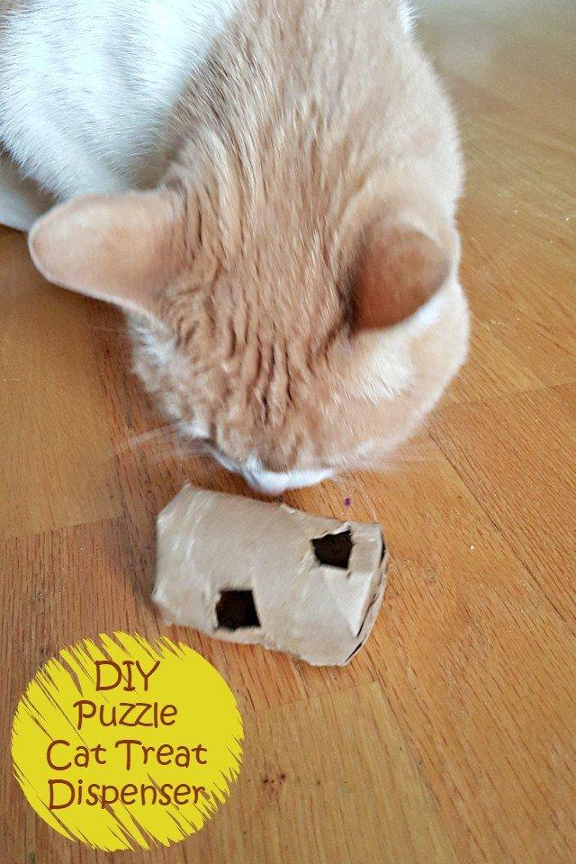 paper roll cat treat dispenser