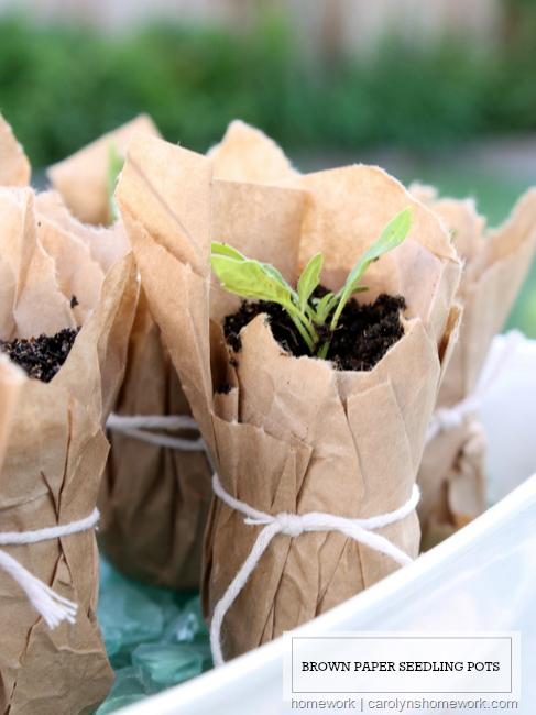paper seedling pot diy