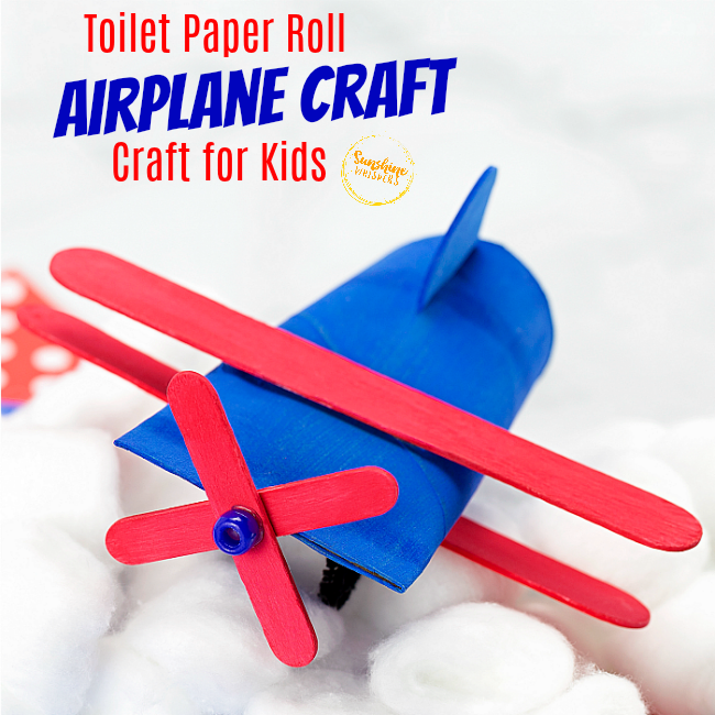 toilet paper airplane