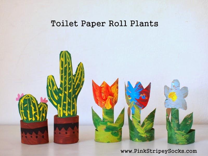 toilet paper roll plants
