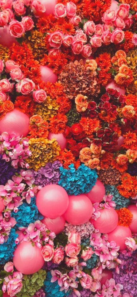 50+ Free Flower Wallpapers for iPhone